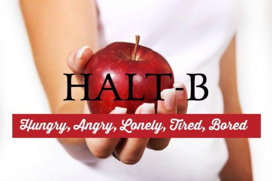 HALT-B