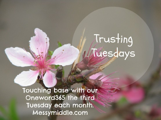 Trusting Tuesdays button