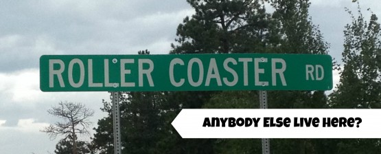 Roller coaster road