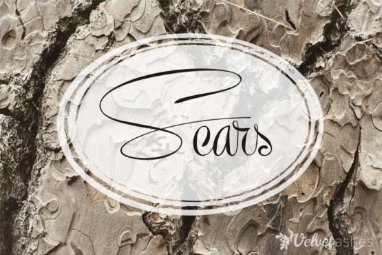 scars-726x484