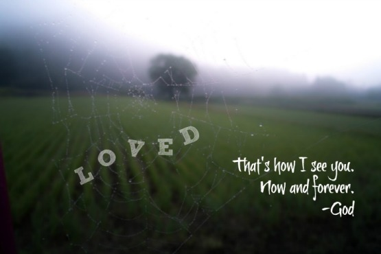 Charlotte's web of LOVE