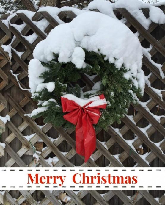 Merry Christmas (560)