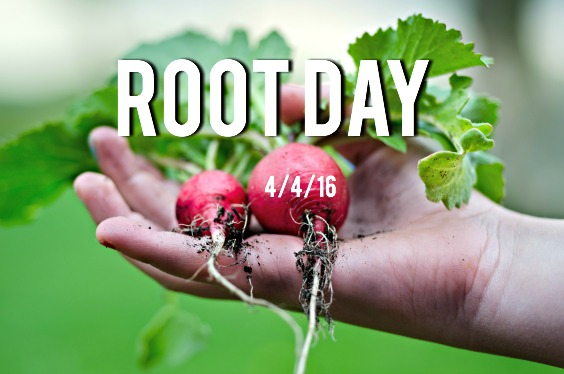 Root Day