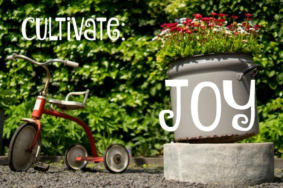 Cultivate Joy