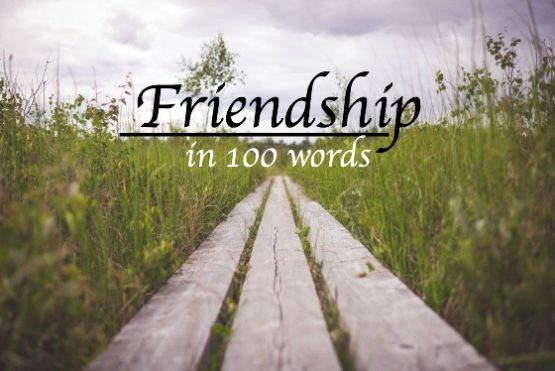 Friendship in 100 words