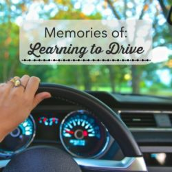 Memories of Learning to Drive