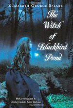 witch-of-blackbird-pond