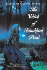 witch-of-blackbird-pond